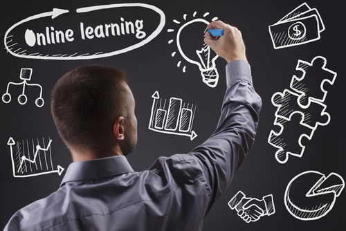 Evolution Online Learning